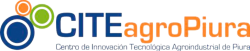 cropped-Logo-CITE-AGRO-1.png
