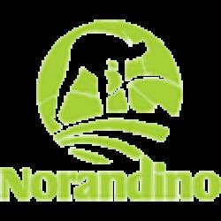 cropped-Logo-Norandino-1.png